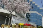神経科 浜松病院