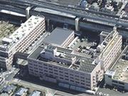 白十字病院